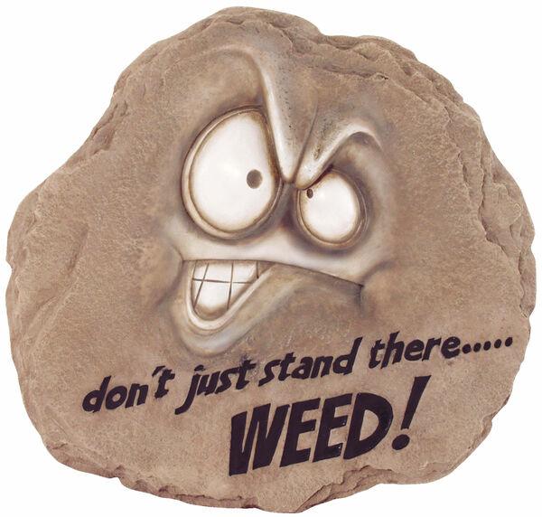 Weeds Stone